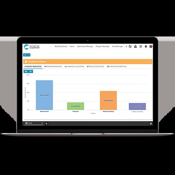 Screenshot of a SmartSimple Cloud visual chart