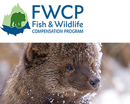Fish & Wildlife Compensation Program