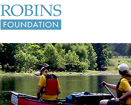 Robin's Foundation picture