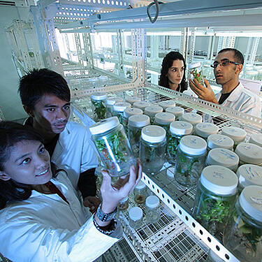 Photo of lab technicians - A global corporate foundation considers a new granting system