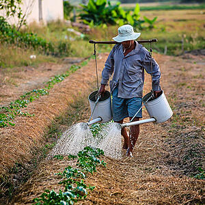 Photo of a man watering garden - this global corporate foundation have a lot of information that needs to be stored, tracked, and reported on