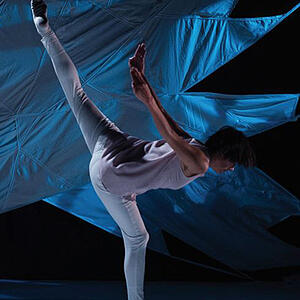 Photo of dancer on stage - SmartSimple had the capabilities Toronto Arts Council was looking for