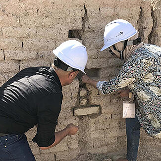 Preservation of earthen buildings and archaeological sites