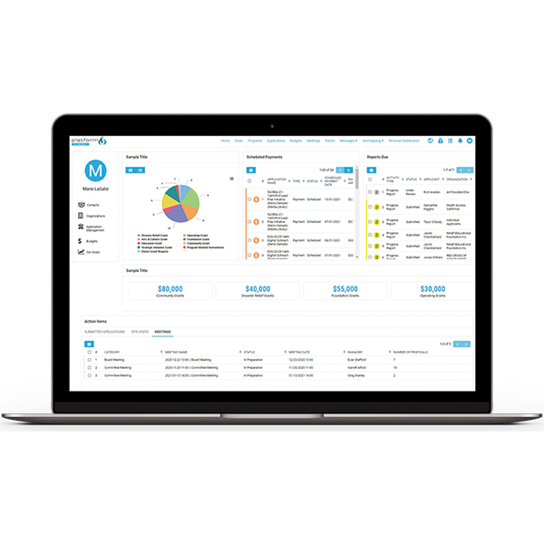 Configurable dashboards within SmartSimple Platform3 for Salesforce®