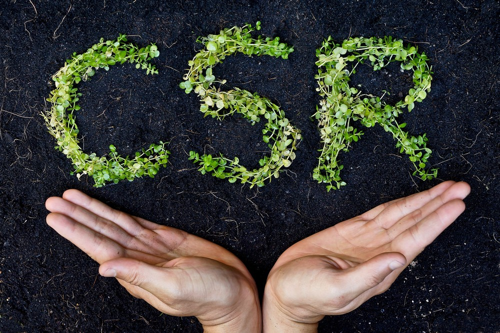 A Brief History of CSR
