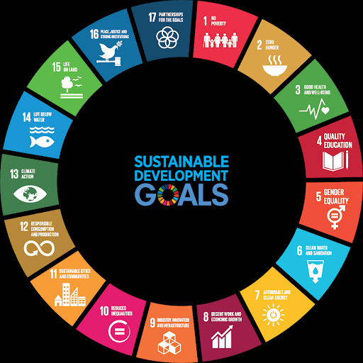 Everyone is starting to adopt the UN SDG framework, but how can you effectively track your efforts against it?