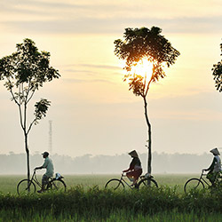 Vietnam countryside